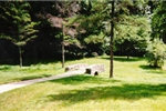 A small bridge in Arboretum Park